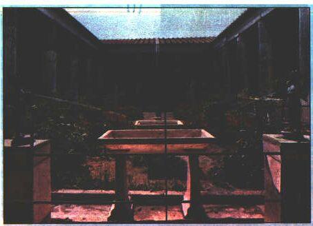 Domus romana for 2 case di storia in florida